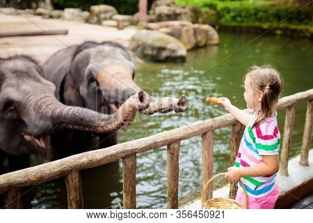 Family Feeding Elephant In Zoo. Children Feed Asian Elephants In Tropical Safari Park