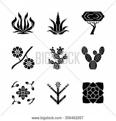 Desert Plants Glyph Icons Set. Exotic Flora. American Succulents And Drought Resistant Plants. Larre