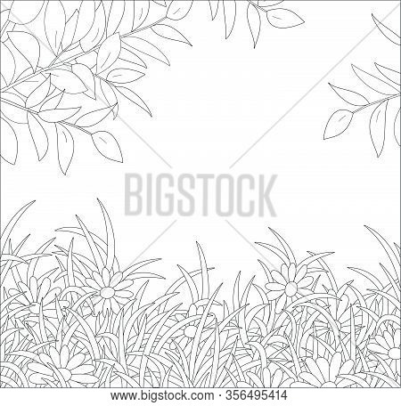 Natural Spring Background With Tree Branches Over Beautiful Wildflowers Among Thick Grass On A Fores