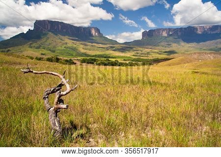 View Of Roraima Table Mountain, La Gran Sabana, Canaima National Park, Venezuela