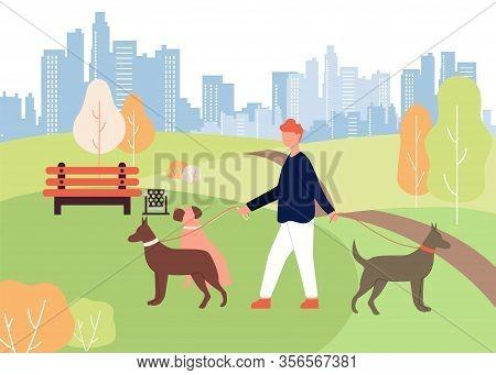Dog Walker Job. Cartoon Man Walk In Park Holding Leash In Hand. Doberman Boxer Breed In Collar Vecto