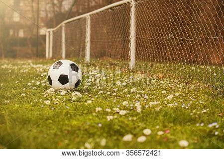 Soccer Ball On Green Grass Lawn With Flowers In The Green Grass. Classic Soccer Ball, Typical Black