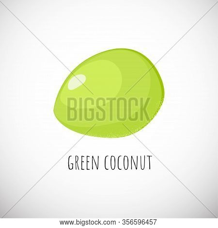 Green Coconut Fruit In Cartoon Style. Asian Coco Summer Drink. Young Healthy Tropical Food Icon. Vec