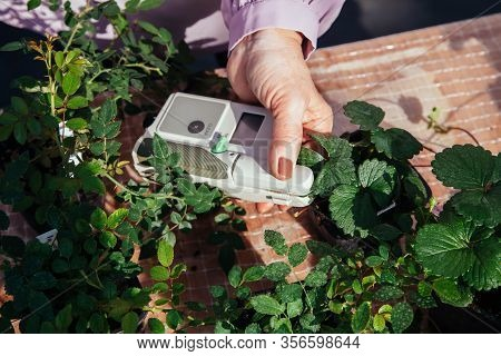 Modern Portable Device For Measuring The Chlorophyll And Nitrogen Content In Plant Leaves