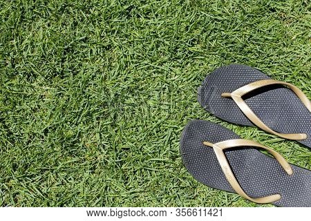 Pair Of Black Beach Casual Slippers On Green Grass Or Meadow Background, Summer Flip Flop Concept, W
