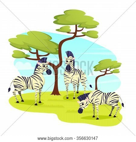 African Wild Zebras Herd Grazing In Grasslands, Horse Family With Distinctive Black And White Stripe