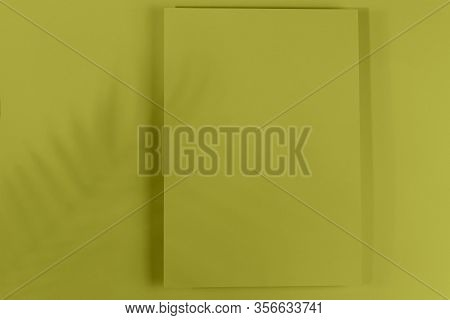 Mosk Up. Abstract Paper Pastel Color Background. Card On A Paper Background With Shadow Of Leaves Fa