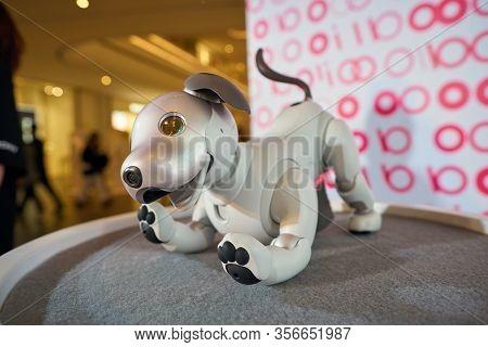 SHENZHEN, CHINA - CIRCA APRIL, 2019: close up shot of Sony's Aibo robot dog at Sony Expo 2019 at UpperHills Mall in Shenzhen, China.