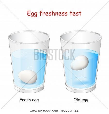 Egg Freshness Test. Two Glasses Of Water And Eggs. The Fresh Egg Will Sink But The Rotten One Will F