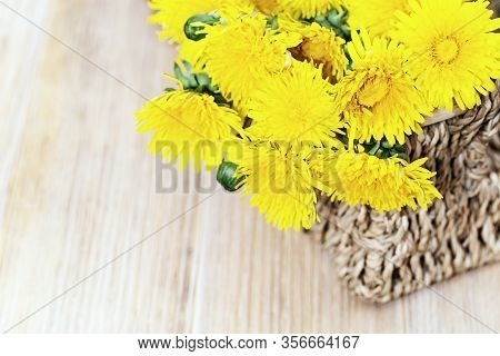 Yellow Dandelion Flowers In Wicker Basket On Wooden Table. Spring Blowball, Flowery Background With