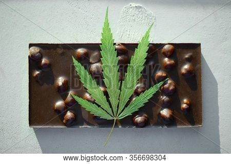 Cbd Cannabis Chocolate With Whole Nuts Edibles, Marijuana Leaf. Chocolate Cbd And Thc Infused Edible