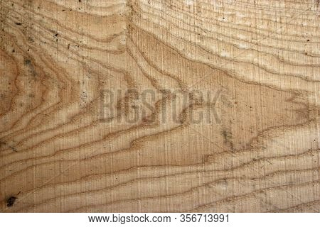 Ash, Fraxinus Excelsior, Tree Recently Sawn Timber Plank With Knots And Showing The Grain That Could
