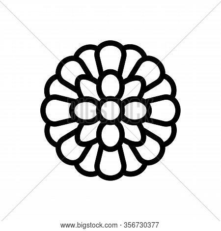 Spring Chrysanthemum Icon Vector. Spring Chrysanthemum Sign. Isolated Contour Symbol Illustration
