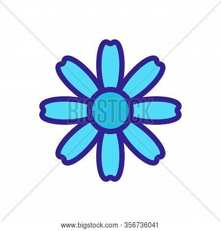 Autumn Chrysanthemum Icon Vector. Autumn Chrysanthemum Sign. Color Isolated Symbol Illustration