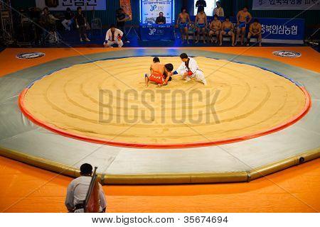 Korean Wrestling Ssireum Aerial Ring Start