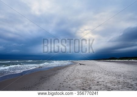 Baltic Sea Coast With Wooden Stump And Cloudy Sky