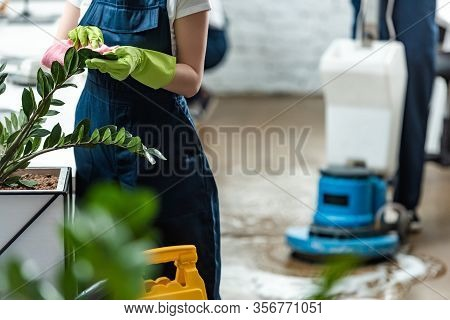Partial View Of Cleaner Wiping Office Plants With Rag Near Floor Cleaning Machine