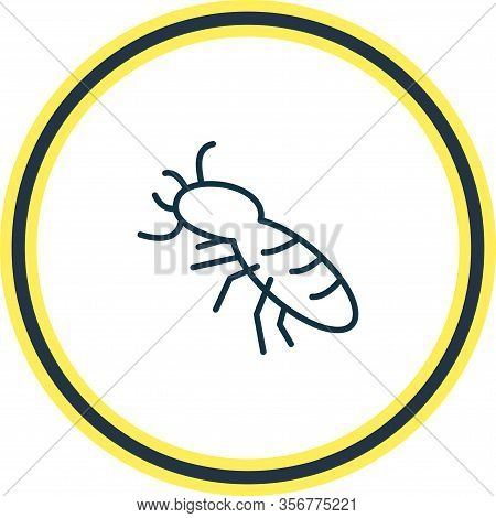 Vector Illustration Of Thermit Icon Line. Beautiful Zoo Element Also Can Be Used As Termite Icon Ele