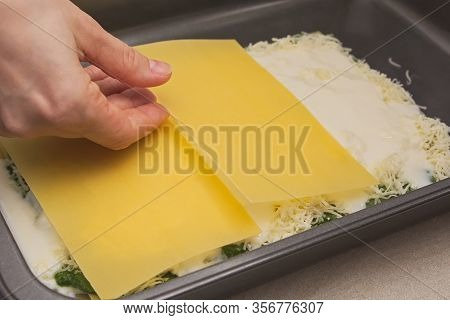 Housewife Hand Placing Raw Lasagne Pasta Onto Baking Sheet