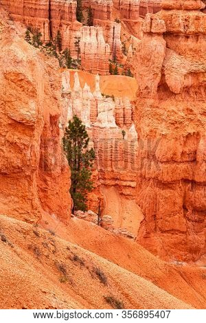 Detail of the Hoodoo rock  spires and rippling sandstone formations of Bryce Canyon, Utah, USA.