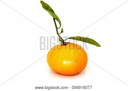 Ripe Tangerine With Leaves Close-up On White Background. Tangerine Orange With Leaves On White Backg