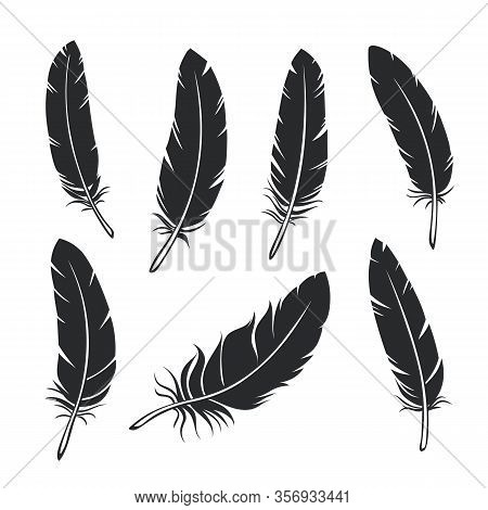 Silhouettes Feathers Set. Glyph Black Bird Feather, Isolated. Vector Illustration.