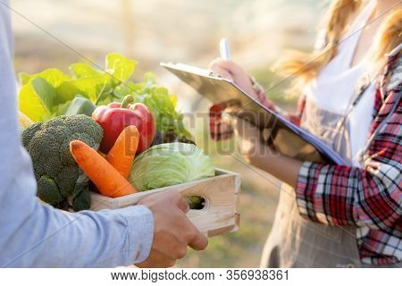 Young Asian Woman Checking Vegetable Organic Hydroponic Farm And Man Harvest Picking Up Fresh Vegeta