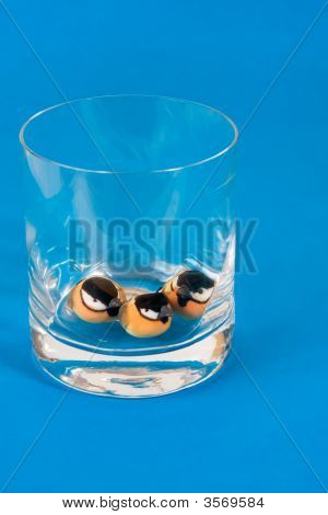 Three Birds In A Glass