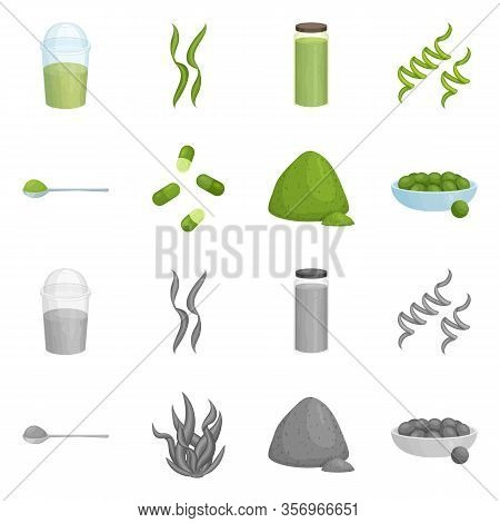 Vector Illustration Of Protein And Sea Logo. Collection Of Protein And Natural Vector Icon For Stock