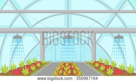 Agricultural Irrigation System Vector Illustration. Automatic Sprinkler Watering Greenhouse Plants.
