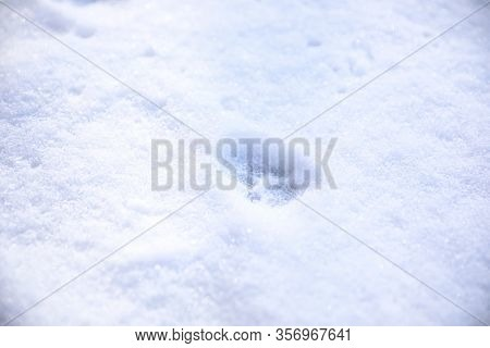 Crispy Snow With Animal's Pawprint As Background
