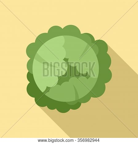 Food Cabbage Icon. Flat Illustration Of Food Cabbage Vector Icon For Web Design