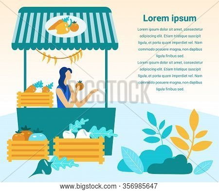 Woman Sells Farm Vegetables. Fresh Vegetables In Wooden Crates. Vector Illustration. People On Marke