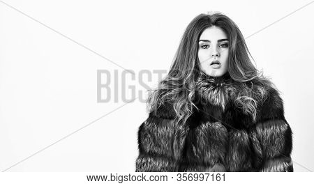 Fur Store Model Posing In Soft Fluffy Warm Coat. Pretty Fashionista. Woman Makeup And Hairstyle Posi