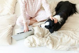 Mobile Office At Home. Young Woman In Pajamas Sitting On Bed With Pet Dog Working Using On Laptop Pc