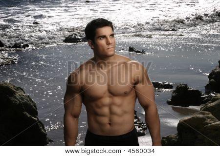 Bodybuilder Portrait