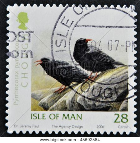 ISLE OF MAN - CIRCA 2006: A stamp printed in Isle of Man shows chough Pyrrhocorax circa 2006
