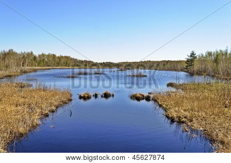 Peat Lake In Spring Time
