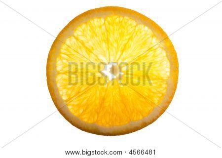 Cross Section Of An Orange