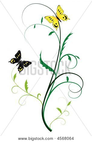 Two Butterflies On The Plants