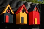Three wooden bird boxes lined up on black background in sunlight english garden poster