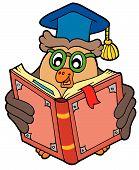Owl teacher reading old book - vector illustration. poster