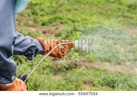ein Mann ist Herbizid Spritzen.