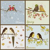 Birds in four seasons- spring summer autumn winter poster