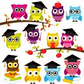 Vector Collection of School or Graduation Themed Owls poster