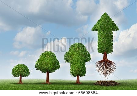 Investment success as a business concept for growing wealth as a small tree gradually turning into a mature flying arrow plant poster