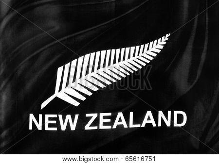 Closeup of silky New Zealand silver fern flag