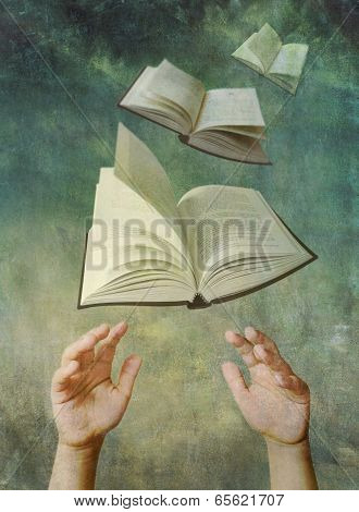 Reach For A Book