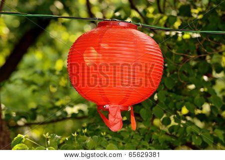 Round red lantern on blurry floral green background