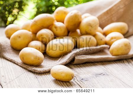 Farm Fresh  Potatoes On A Hessian Sack